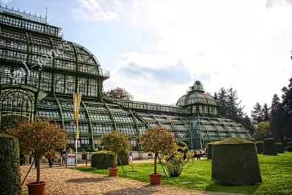 Schoenbrunn Palm House 2