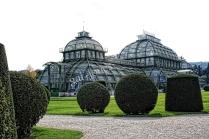 Schoenbrunn Palm House 4
